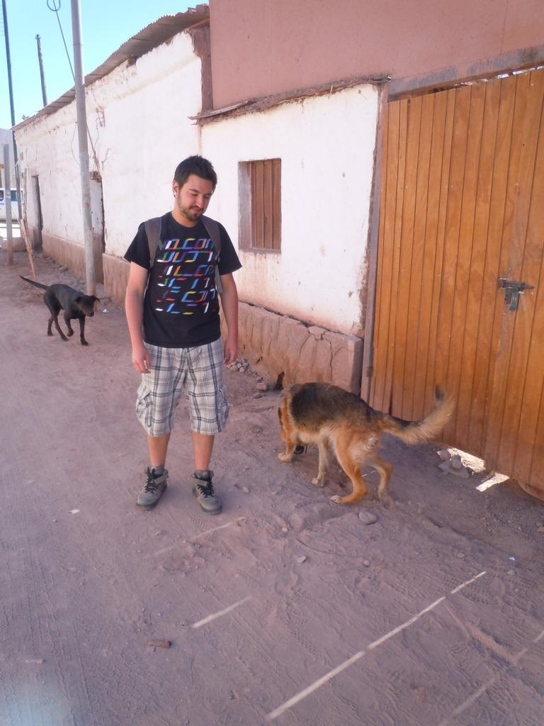 San-Pedro-de-Atacama-Chile-Deserto-do-Atacama-Perro